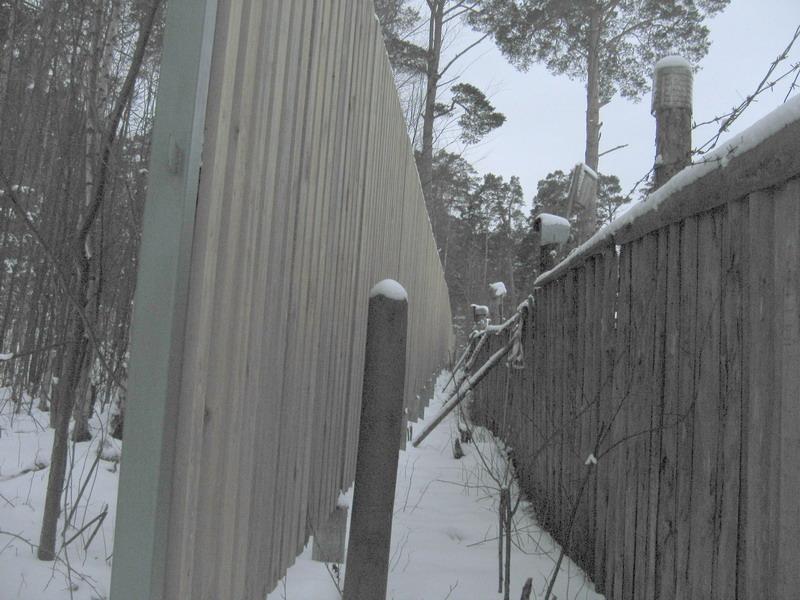 Забор вдоль западной границы заповедного участка